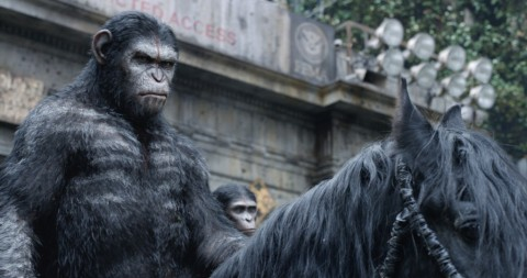 Andy Serkis as Caeser the ape. Photo courtesy:The American Cinematographer