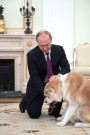 Pooch-loving Putin Presented With Puppy